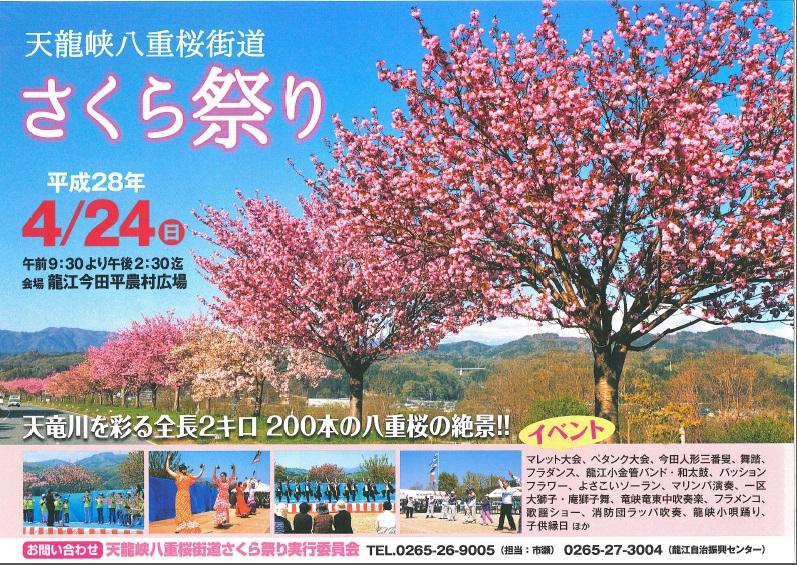 4月24日]天龍峡八重桜街道さく...