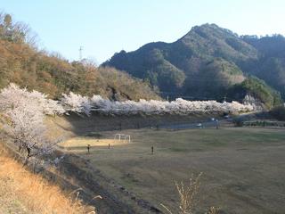 np_shinanokoishi1