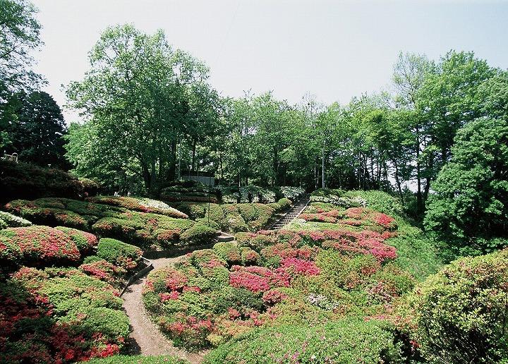 台城(大島公園)(松川町)
