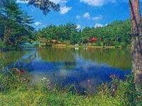 おおぐて湖(下條村)