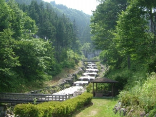ふるさと村自然園せいなの森キャンプ場(阿智村清内路)