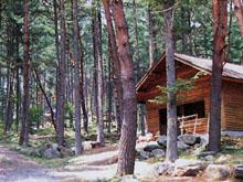 山の寺キャンプ場(高森町)