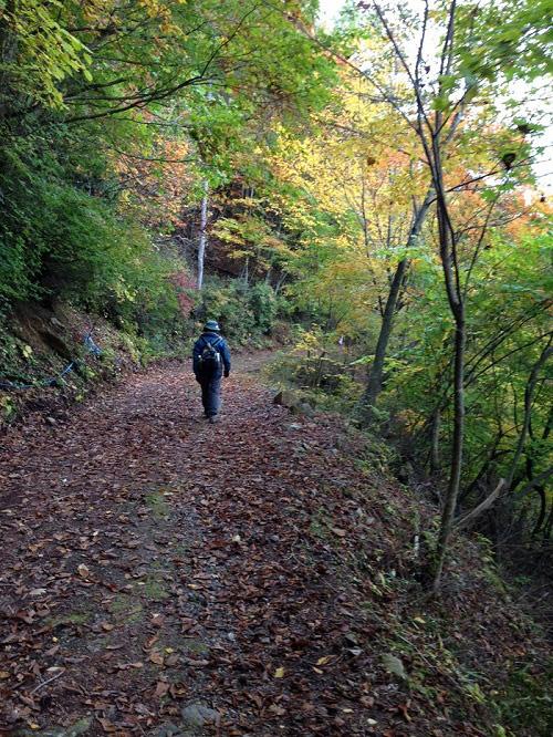 小川路峠を歩く