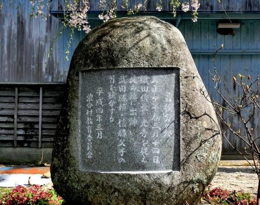 ③4-23 首検分の桜62