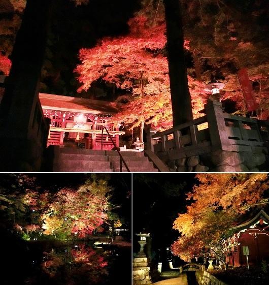 ⑭ 11-16 八幡神社 619-3