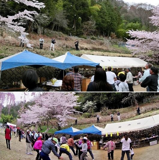 4-10 ㉑氏乗桜まつり 97-2