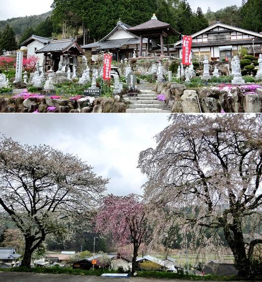 4-24 ⑪売木宝蔵寺 433-2