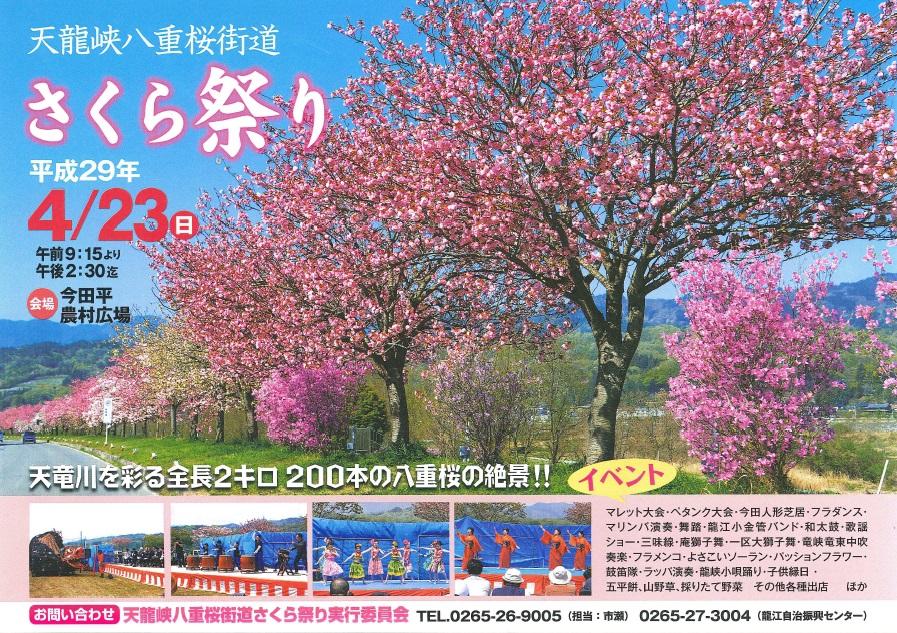 八重桜街道さくら祭り(表面)