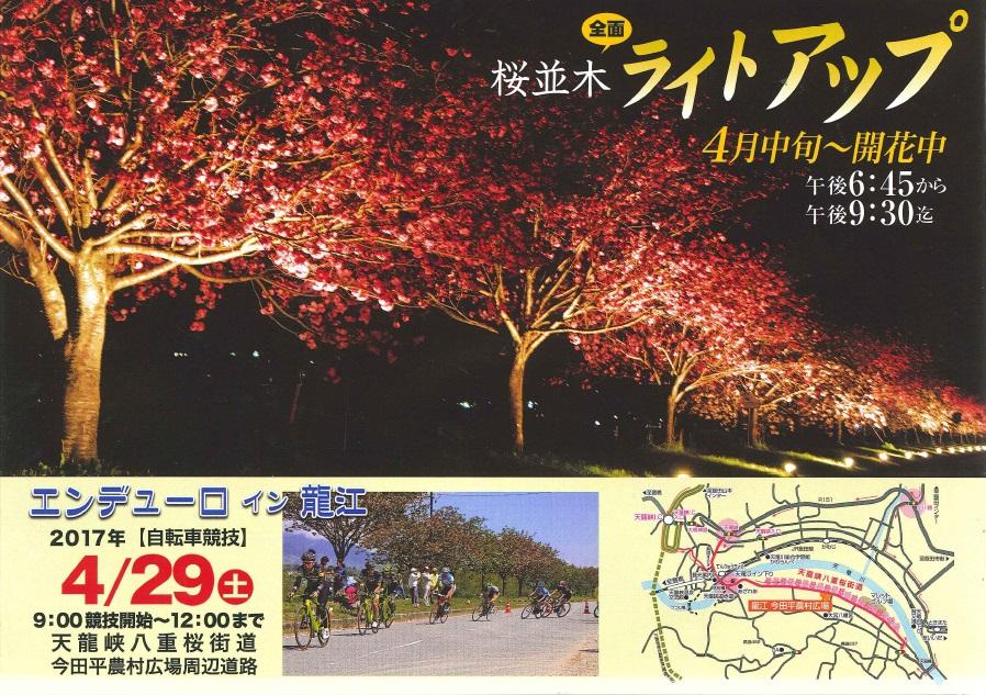 八重桜街道さくら祭り(裏面)
