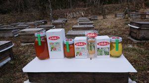 ハチミツの採蜜体験コース
