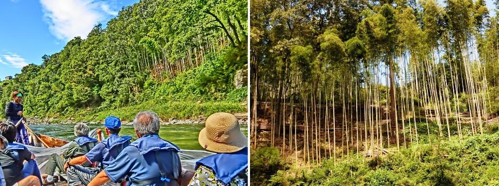 竹やぶ 680-2