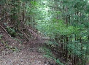 旧遠山森林鉄道を散策