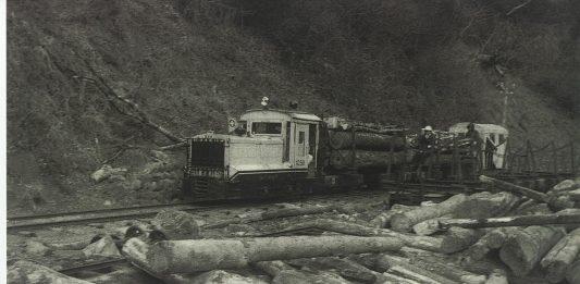 メイン写真候補2 遠山森林鉄道・鈴木1 008
