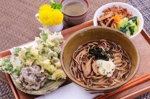 写真①山菜料理(イメージ)さるのこしかけ