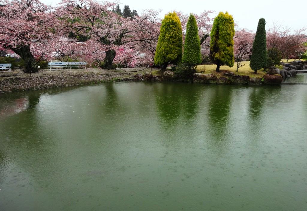 4-13 雨の松川プール 307