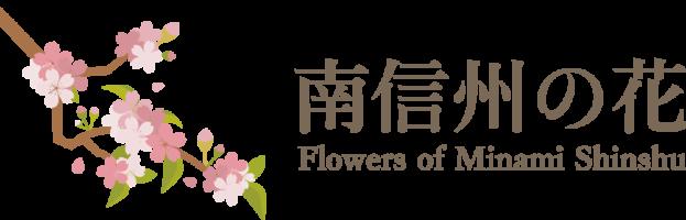 南信州の花